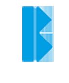 Blasl Footer Logo